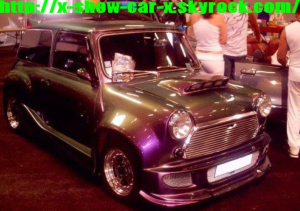 article 13austin mini tuning mautauban