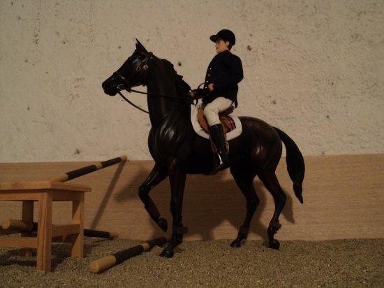 Un cheval...Peu motivé