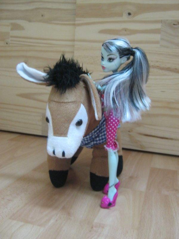 "Frankie et son ""cheval"" (Ane xD)"