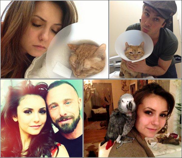 Découvrez des photos personnellesrécentes de Nina, et des photos de Fans avec Candice.