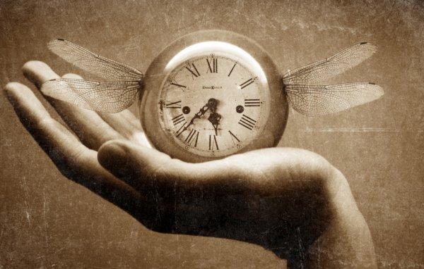 """""""La vie est un torrent, le temps passe et passe incessamment."""""""