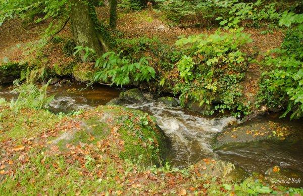 ruisseau mon beau ruisseau :)
