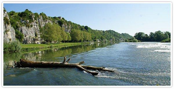 Rochefort sur Nenon ( 39)