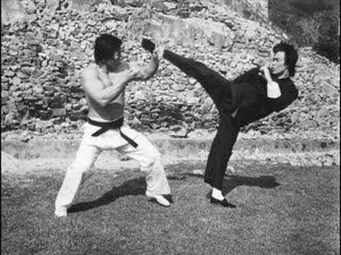 Bruce lee le plus grand ma tre des arts martiaux de tous for Maitre art martiaux chinois