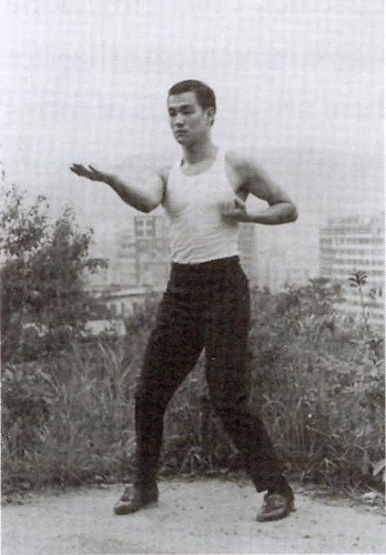GARY ELMS vs BRUCE LEE UN COMBAT INOUBLIABLE