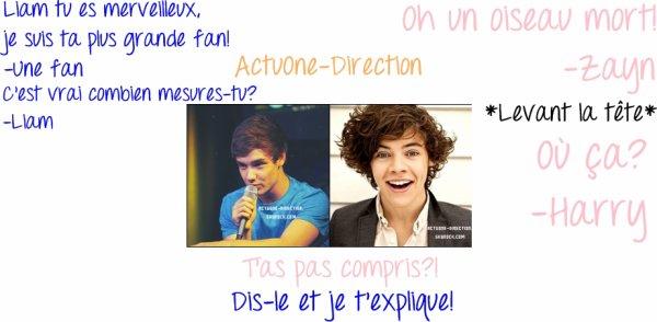 Dialogue entre Liam/Une fan et Zayn/Harry :) Aimez-vous? Avez-vous compris? Si non! Je vous explique! ;)