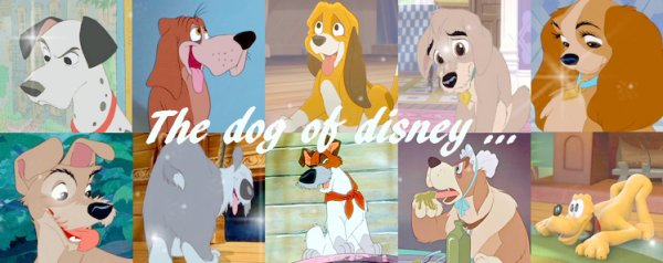 The dog of disney