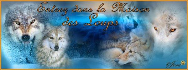 **********   LA MAISON DES LOUPS  ***********