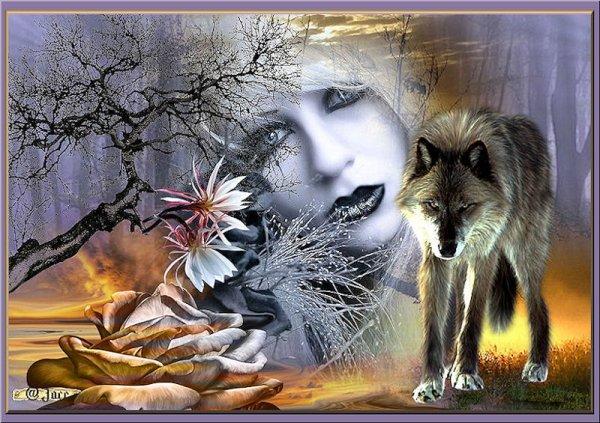 Loup Noir.