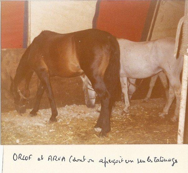 La  Photo   Inédite  du  Dimanche....