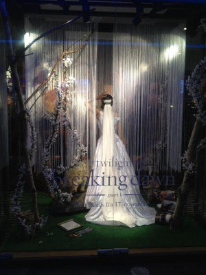vitrine breaking dawn
