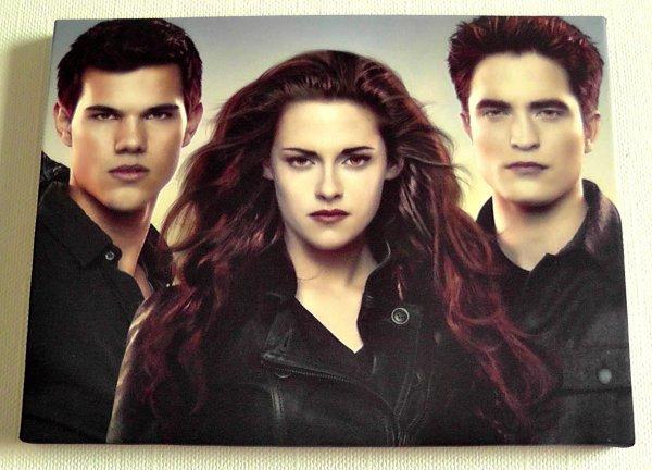 Cadres personnalisables : Twilight s'invite chez vous !