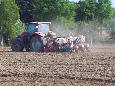 labours et semis mais 2011