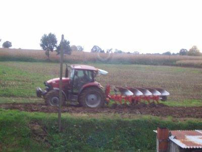 labour pour le blé 2011