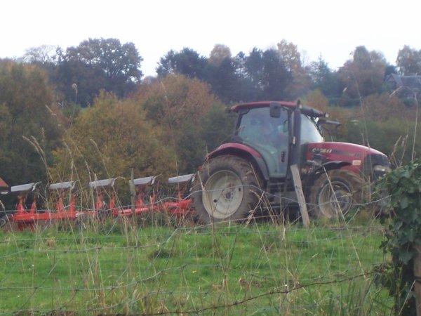 labour pour blé
