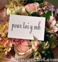 pour  toi mon coeur
