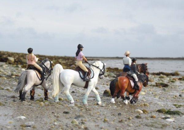 Balade au bort de la mer (participation au photo-show de schleich-6949)