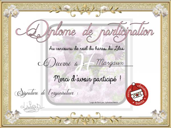 concours de Noël ( Participation au concours de noël de Au-haras-des-Lilas)