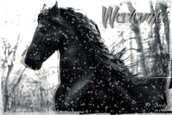Kronos, Hell's horse