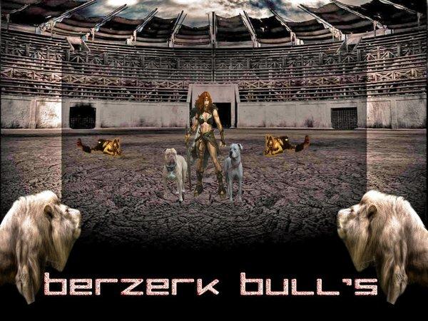 BERZERKBULLS