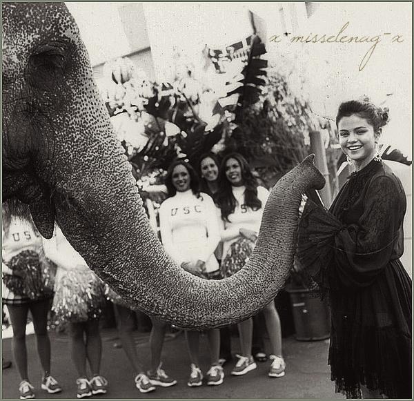 + February 12th  ;   Selena a été vue avec Lily Collins allant déjeuner. + Découvre un nouveau photoshoot de Selena pour Vanity Fair + une vidéo behind the scenes. +