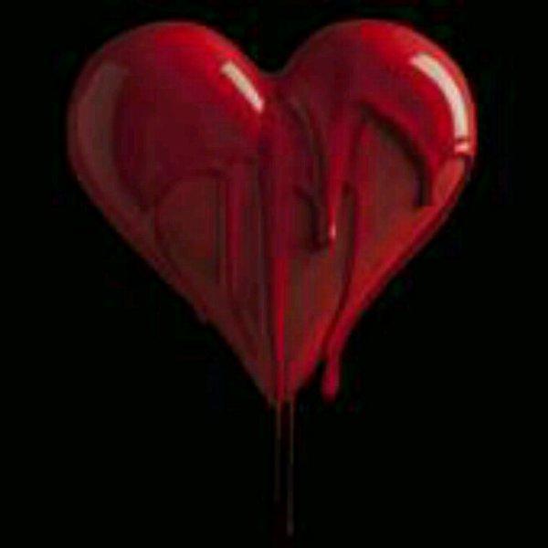 """Chapitre numéro 13 : Mon coeur """"lui..."""" en saigne encore... !!!"""