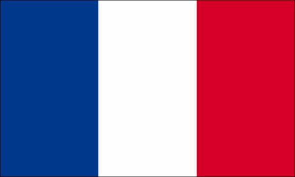 ♥ :D VIVE LA FRANCE :D ♥