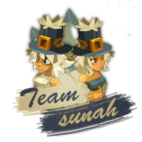 Commande Sunah (2)