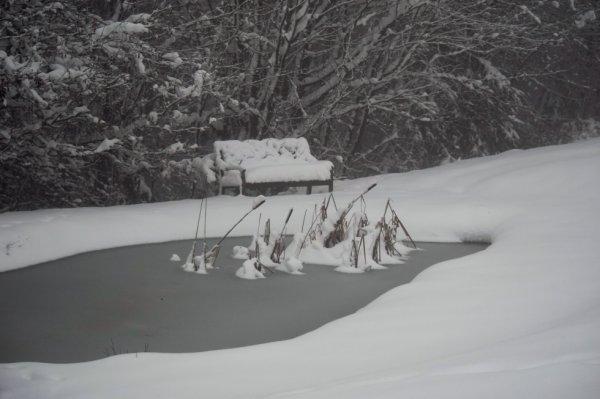 On a eu de la chance avec la neige ce dimanche.