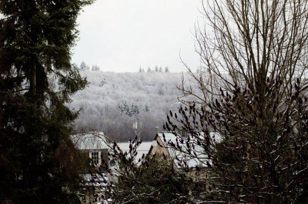 Temp hivernal