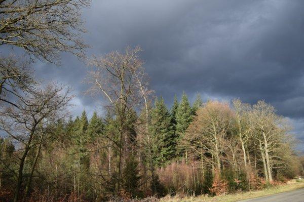 Photo prise pendant la tempête de la semaine...