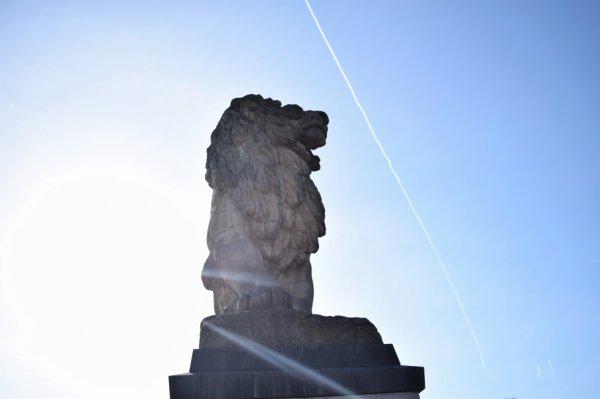 Lion du barrage de la gileppe. J'aime les rayons de soleil.
