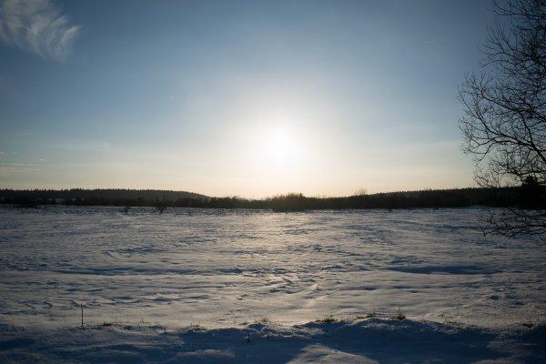 La Fagne en hiver...