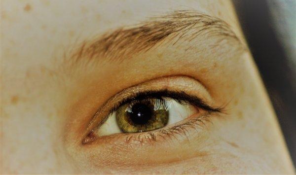 L'oeil...