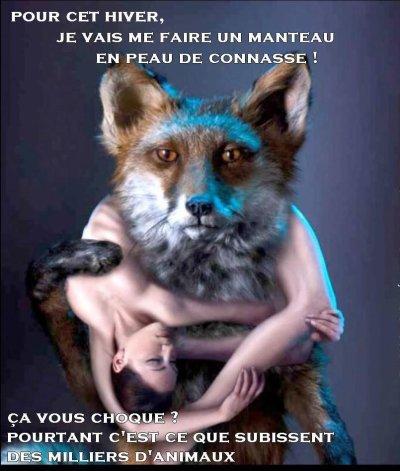 Ne portez pas de fourrure !!!