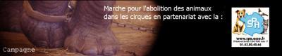 ABOLITION DES ANIMAUX DANS LES CIRQUES