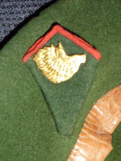 Bêret et Insignes de cols du 2e Chasseurs Ardennais,  Mai 1940. (dans le jus de grenier....)