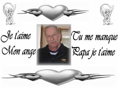 un ange qui va me manquer beaucoup   plutot un papa que jaie adoree gros bisous repose en paix