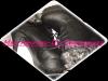 Boots à Lacets Noires