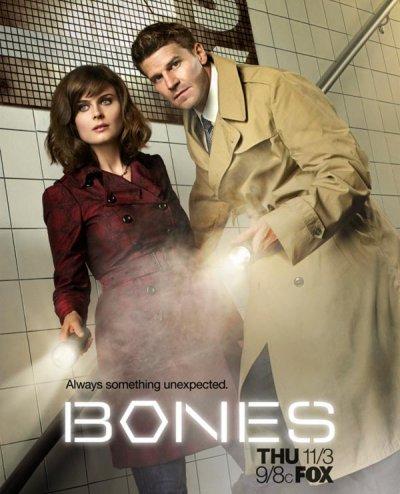 Fiche série : Bones