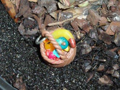 bijoux de tel panier de fruits