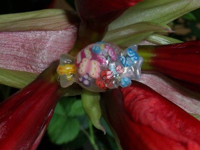 bague enfant bonbon en fimo liquide et papillon et libellule !