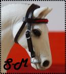 Photo de Sellerie-Miniature