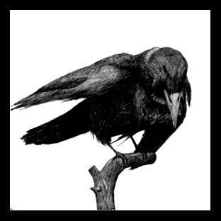 poemes gothiques et images sombres