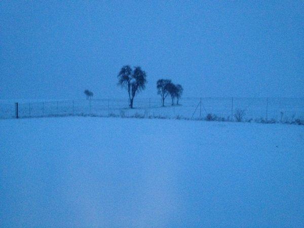 La plaine hier 10 cm de neige