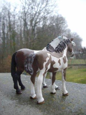 De nouveaux chevaux !