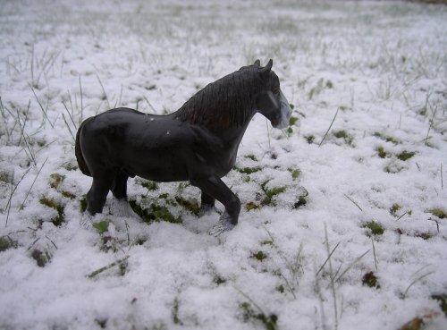 C'est un hiver !! 8D