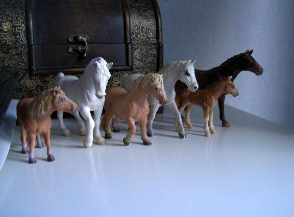 des nouveaux chevaux ! ^^
