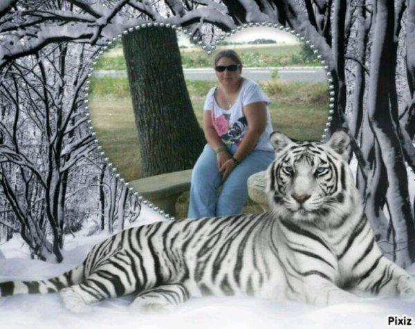 Coeur Tigre Hiver