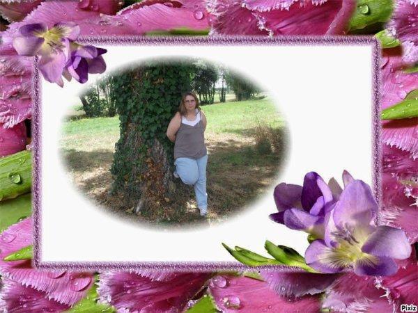 Cadre-fleurs roses et mauves